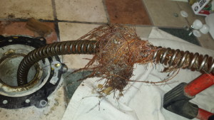 2-roots-debris-clogged-drain